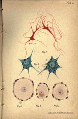 Volumen 67 - N. 4 imagen
